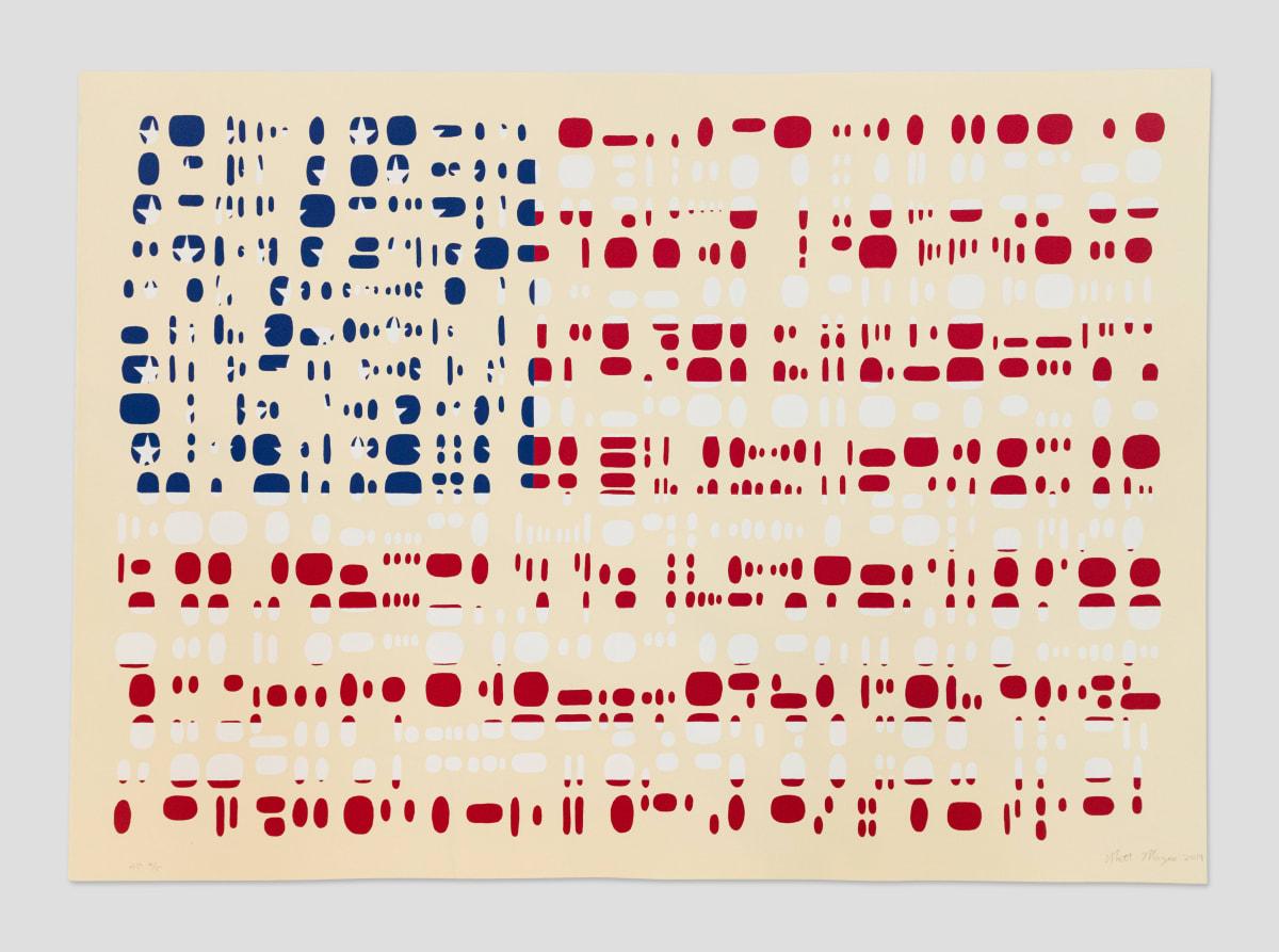 Matt Magee, Fragment Flag, 2019