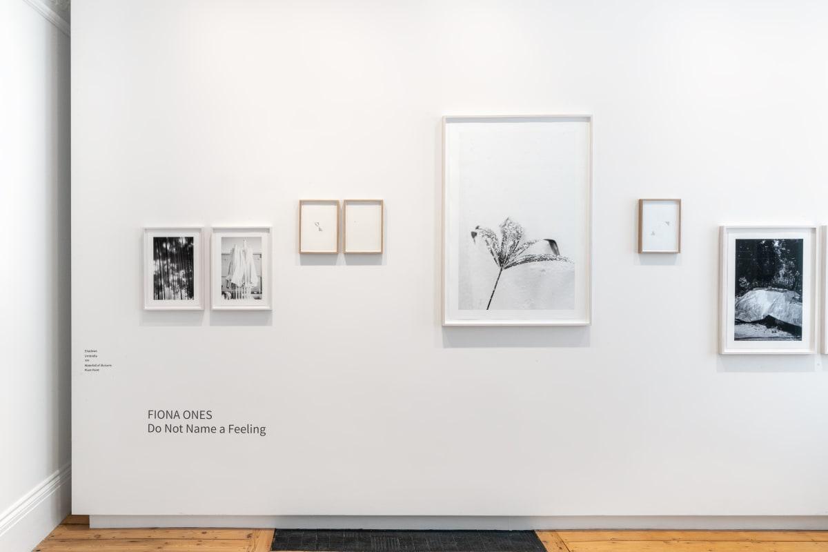 Exhibition Walk Through