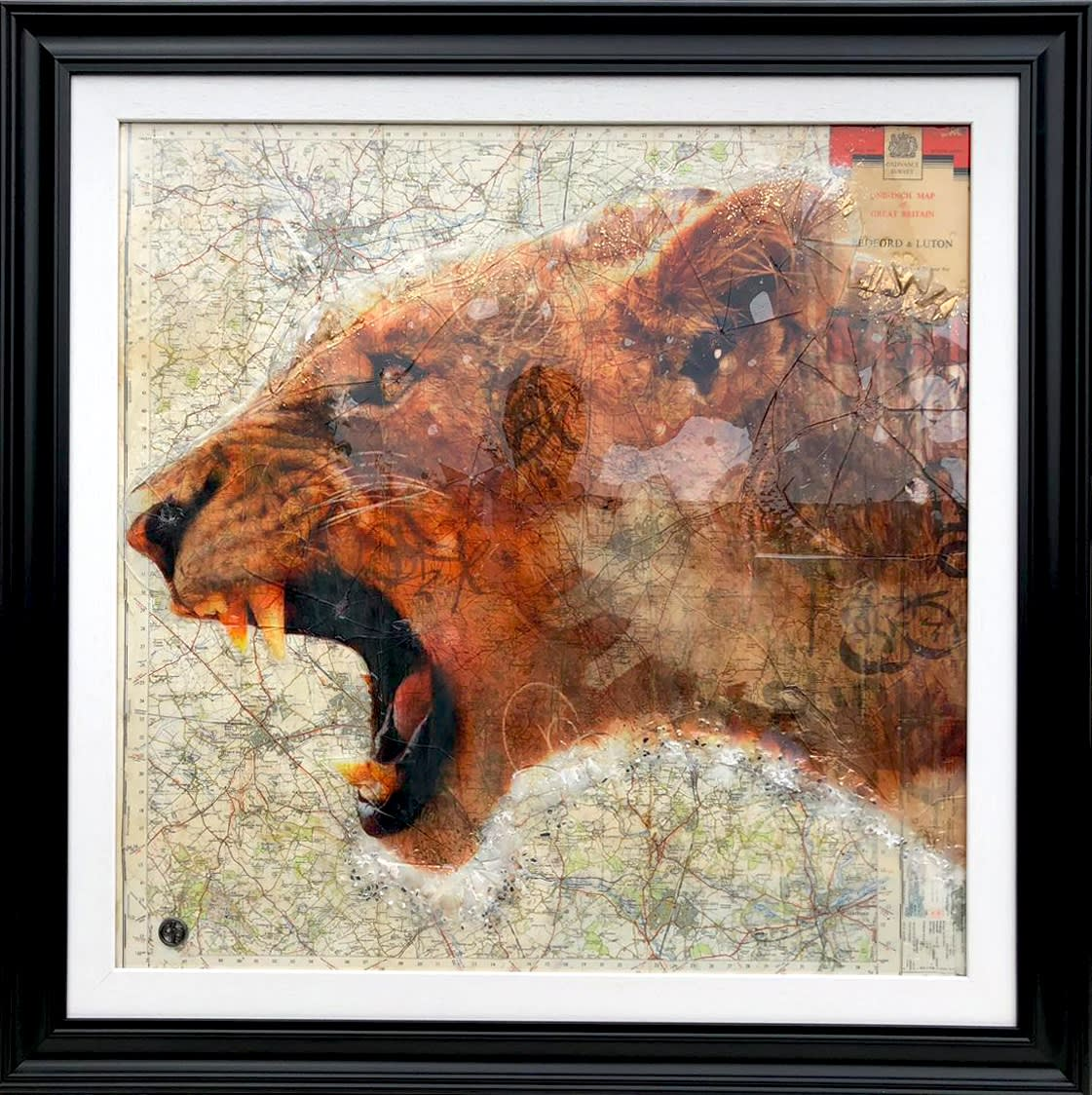 "Dan Pearce Title: Lion Herts Size: 29"" x 29"" Price: £1,850 (Framed)"