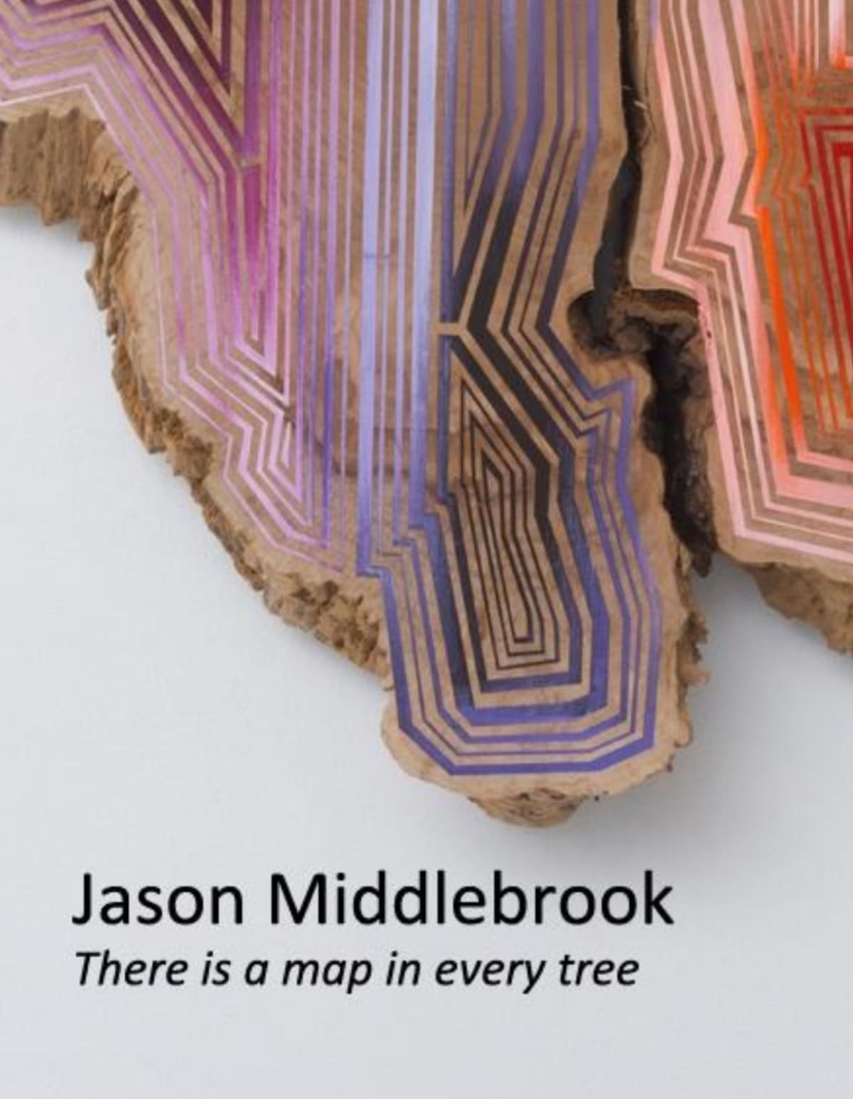Jason Middlebrook: There is a map in every tree