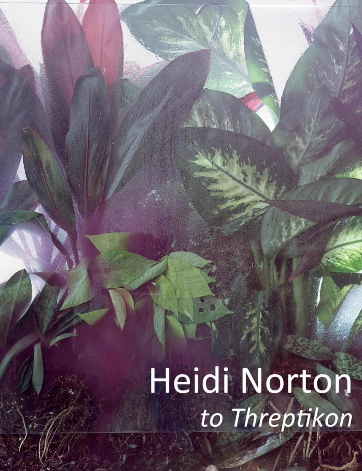 Heidi Norton: to Threptikon