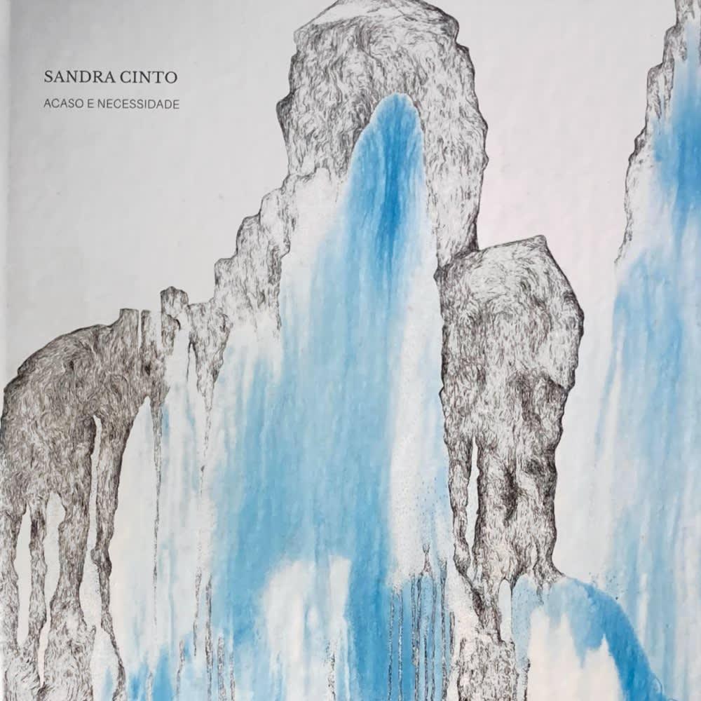 Sandra Cinto: Chance and Necessity