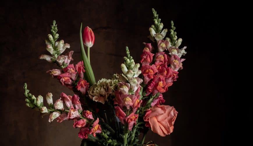 Still Life Stories: Fabled Flora