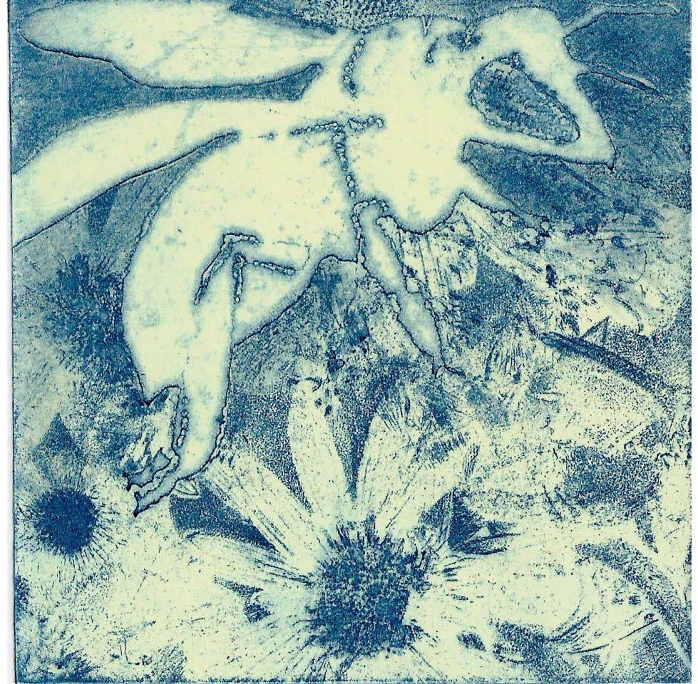 Noeleen Kleeve Wild Blue Yonder