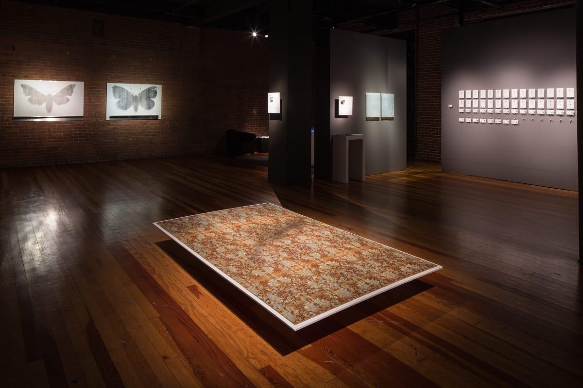 """Richard Speer Recommends """"Hidden Narratives"""" (Visual Art Source)"""