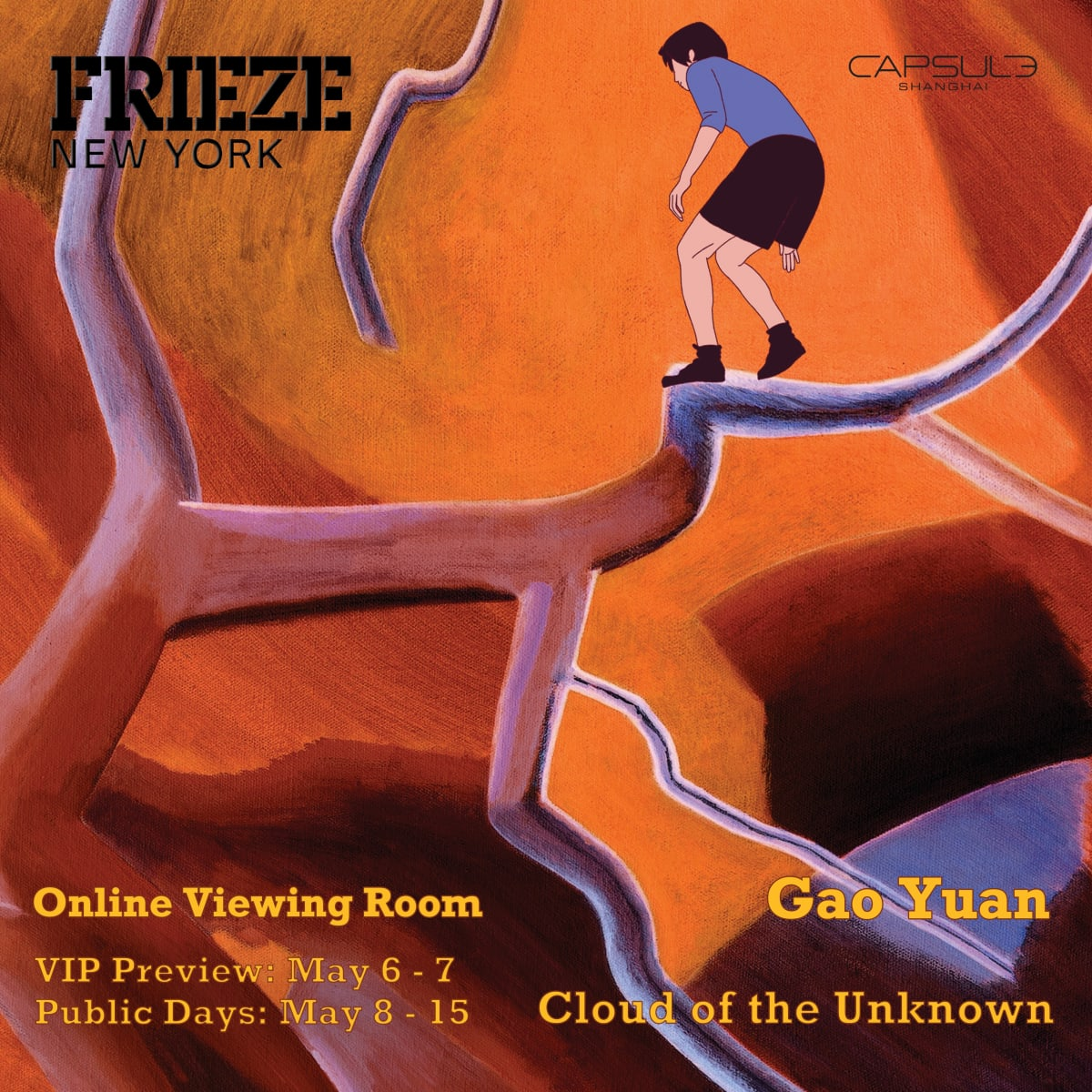 Frieze New York 2020 | Online Viewing Room