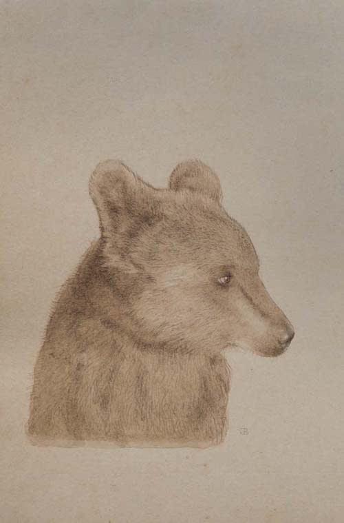 Jethro BUCK (b.1986) Hello Bear, 2016 Walnut ink on Sanganer paper 7 ½ x 5 inches / 19 x 12.7 cm