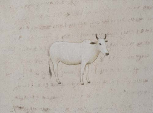 Jethro BUCK (b.1986) White Cow, 2016 Natural pigment and gum arabic on antique paper 5 5⁄8 x 7 5⁄8 inches / 14.3 x 19.4 cm