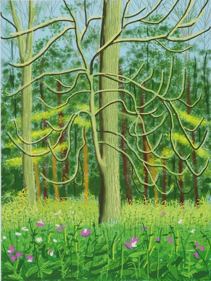 David HOCKNEY, OM, CH, RA (b.1937) The Arrival of Spring in Woldgate, East Yorkshire in 2011, 4th May 2011 iPad drawing printed on paper, Edition of 17/25 55 1/8 x 41 ¼ inches / 140 x 105 cm