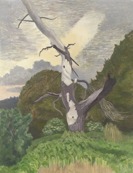 John NASH, CBE, RA (1893-1977) Dead fir tree, Rendlesham Forest, 1969 Oil on canvas 22 x 28 inches / 56 x 71 cm Signed and dated '69, inscribed with title verso