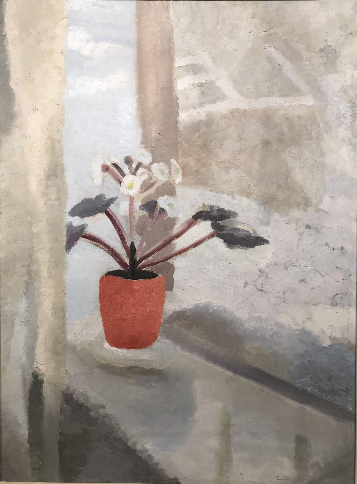 Winifred Nicholson, Winter Primula, 1940