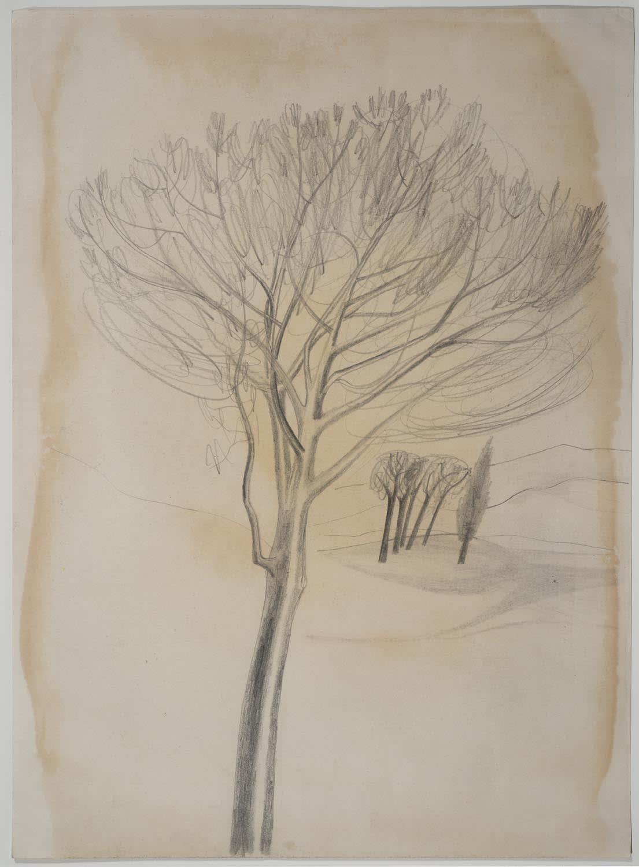 Ben Nicholson, Trees, Tuscany, 1955