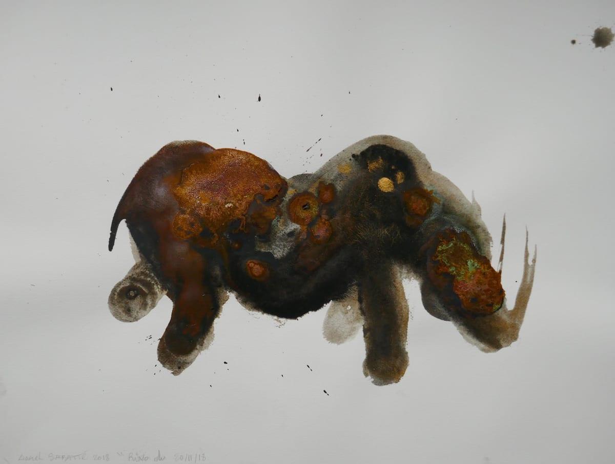 Lionel Sabatté, Rhino du 20 novembre, 2018