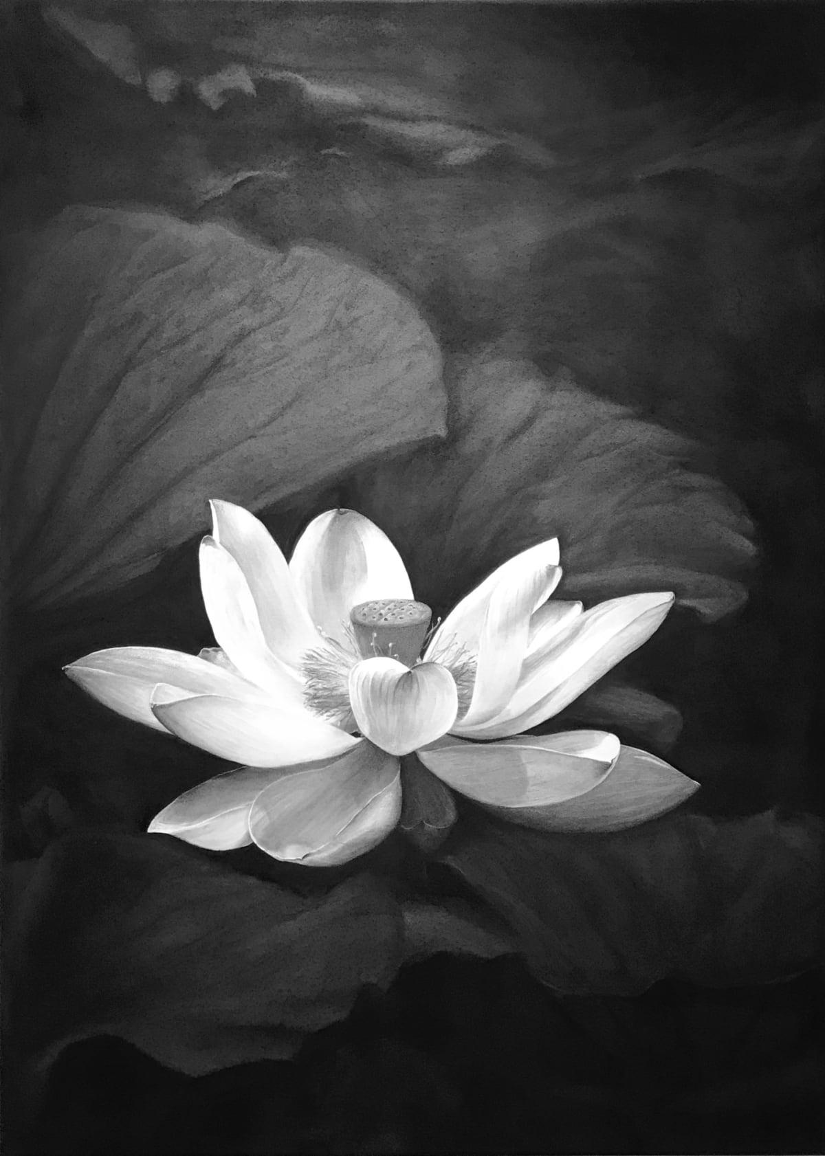 Liu Ling, Serenity, 2019
