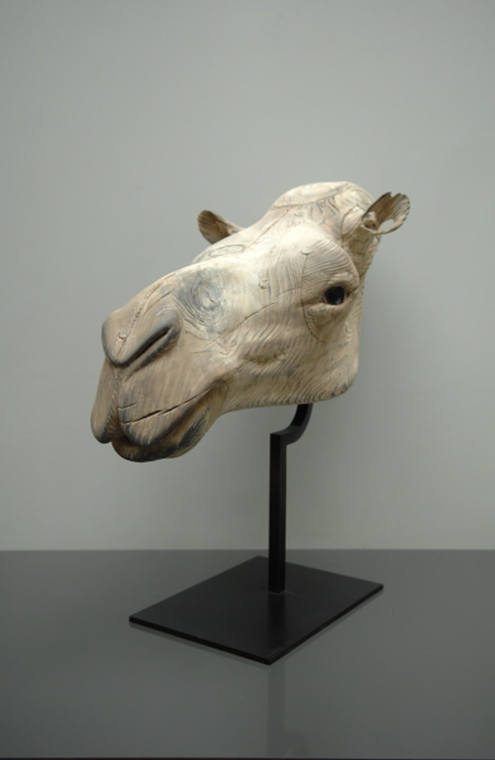 Quentin Garel, Mask of the Camel, 2013