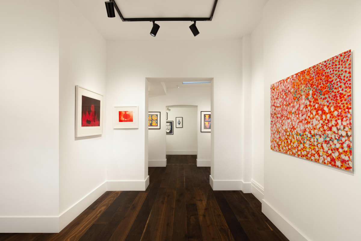 Damien Hirst Anish Kapoor Dellasposa Gallery