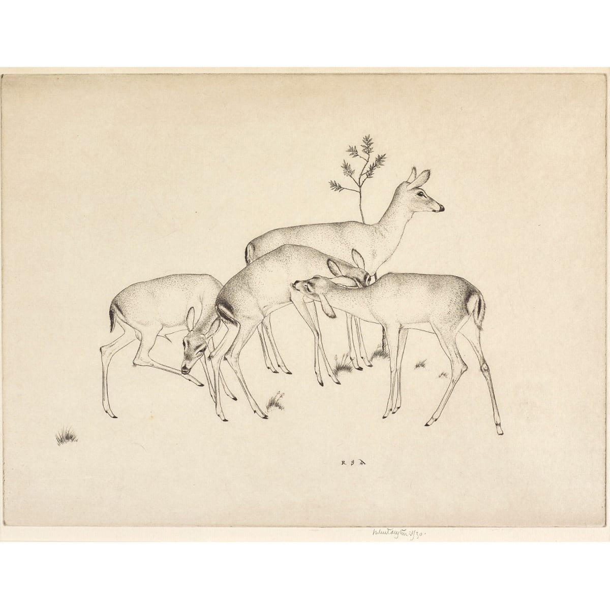 Robert Sargent Austin Deer, 1930 initialled RSA in plate; signed and dated 1930 in pencil to margin etching plate size: 8 3/4 x 11 5/8 inches edition of 75