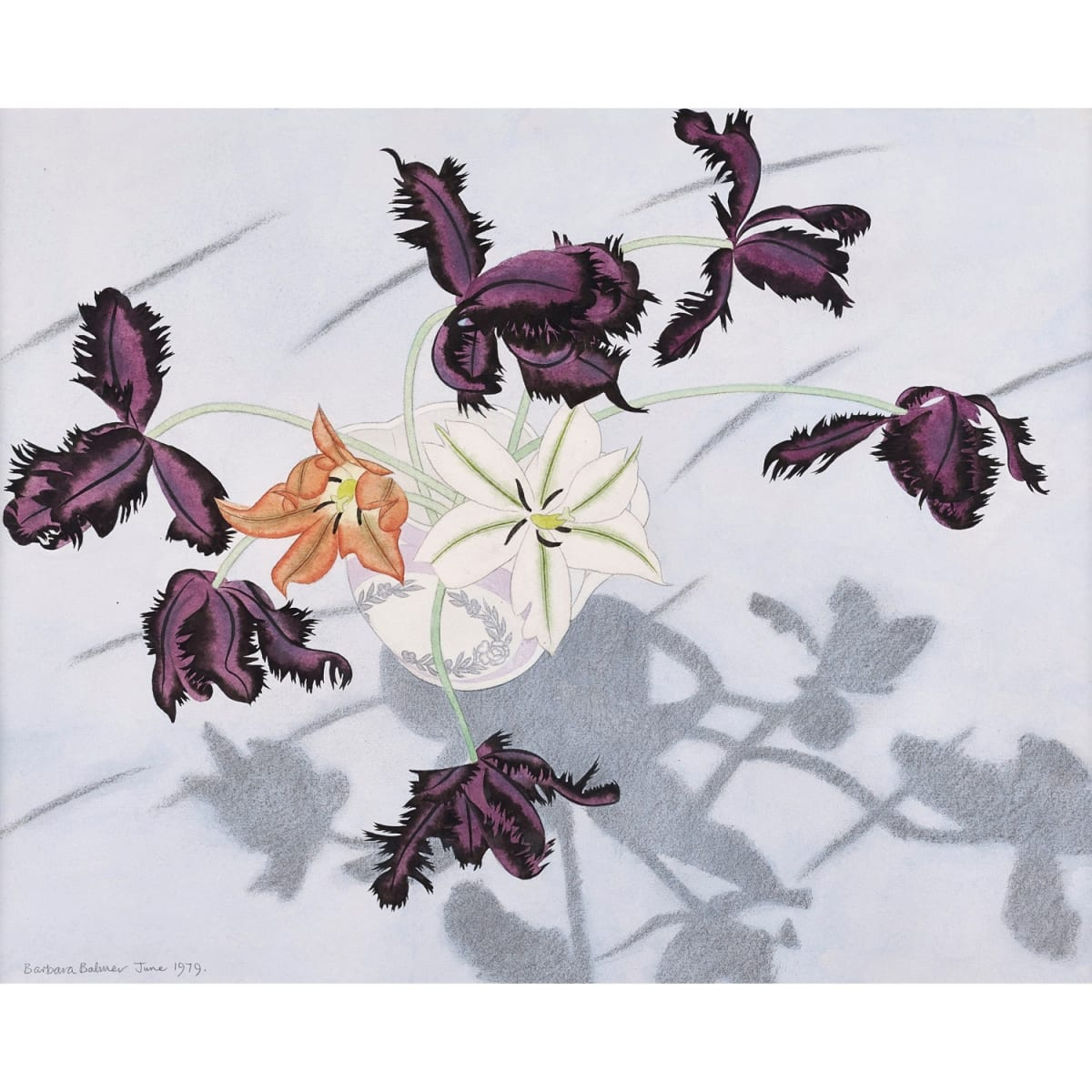 Barbara Balmer Black Parrot Tulips, 1979 signed and dated June 1979 pencil and watercolour 16 1/2 x 21 inches
