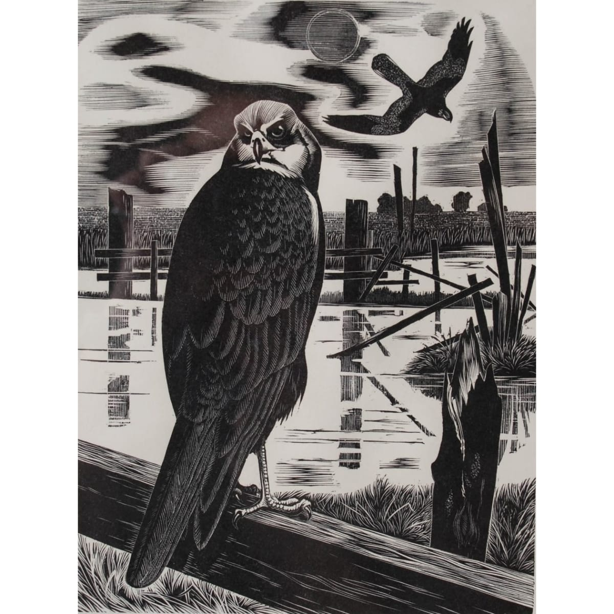 George William Lennox Paterson Hen Harrier signed, titled and numbered 7/100 in pencil to margin woodcut 7 3/4 x 6 inches