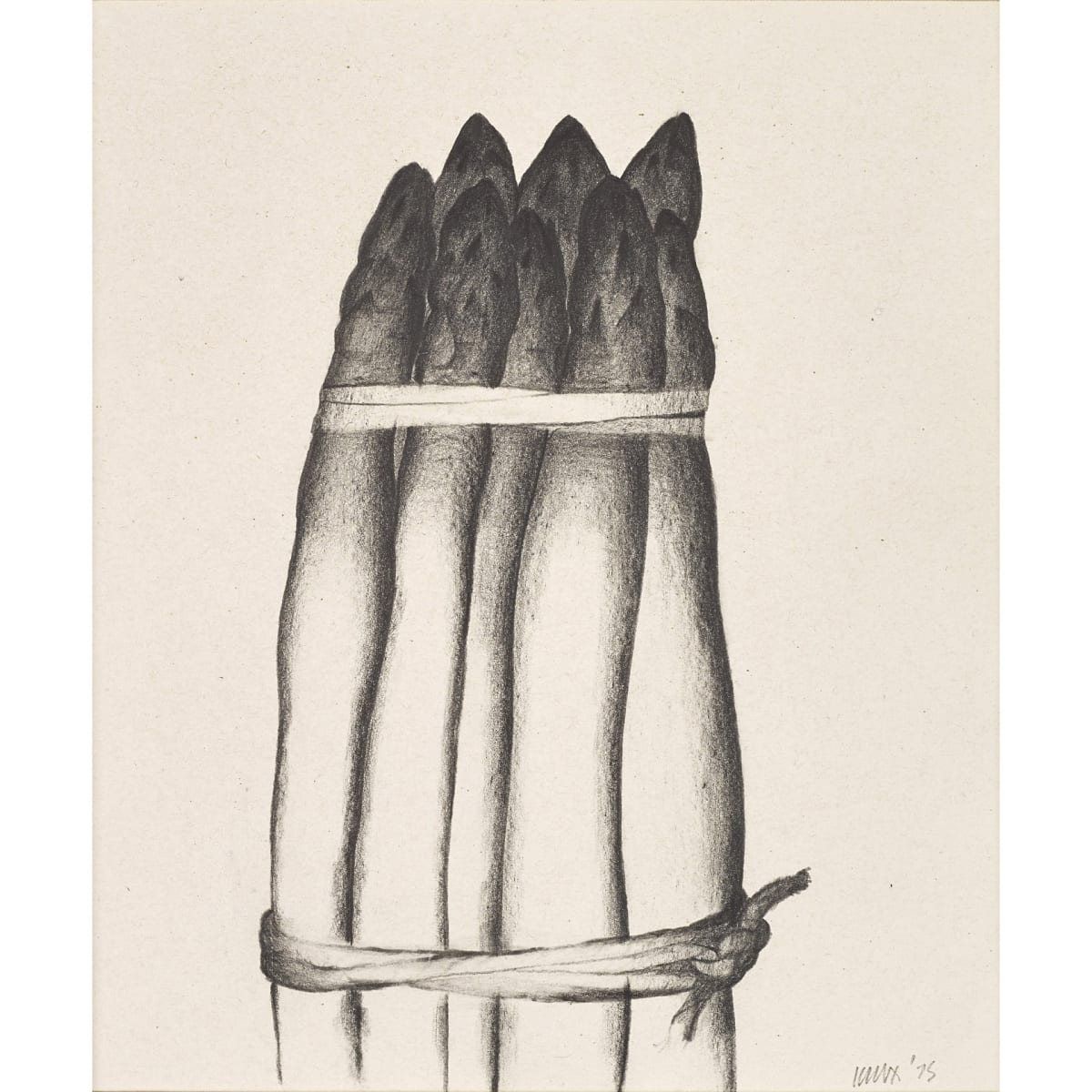 Jack Knox Asparagus, 1975 signed and dated '75 conté on paper 7 x 6 inches