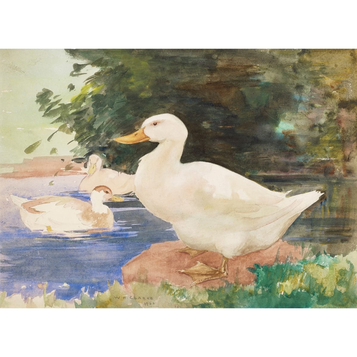 William Hanna Clarke The White Drake, 1922 signed and dated 1922 watercolour 10 3/4 x 14 3/4 inches