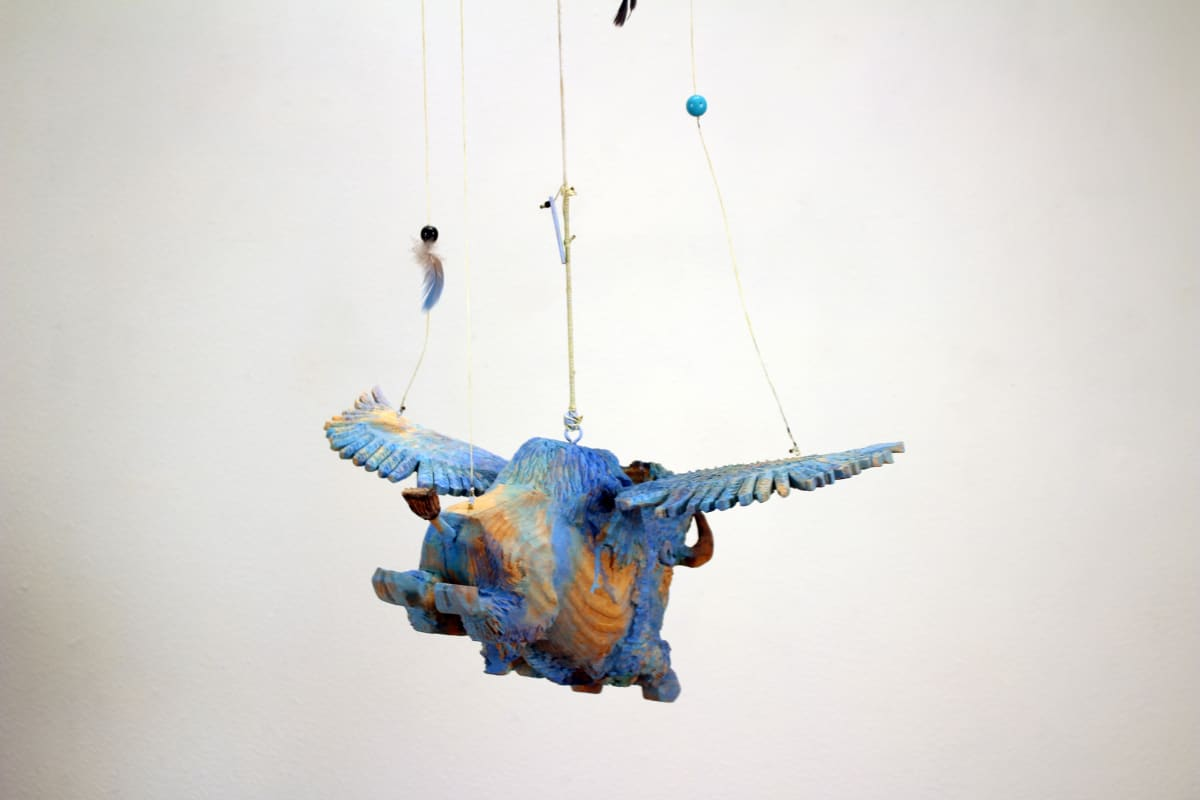 A Little-Told Story, A Long-Held Dream., The Flying Blue Buffalo Series