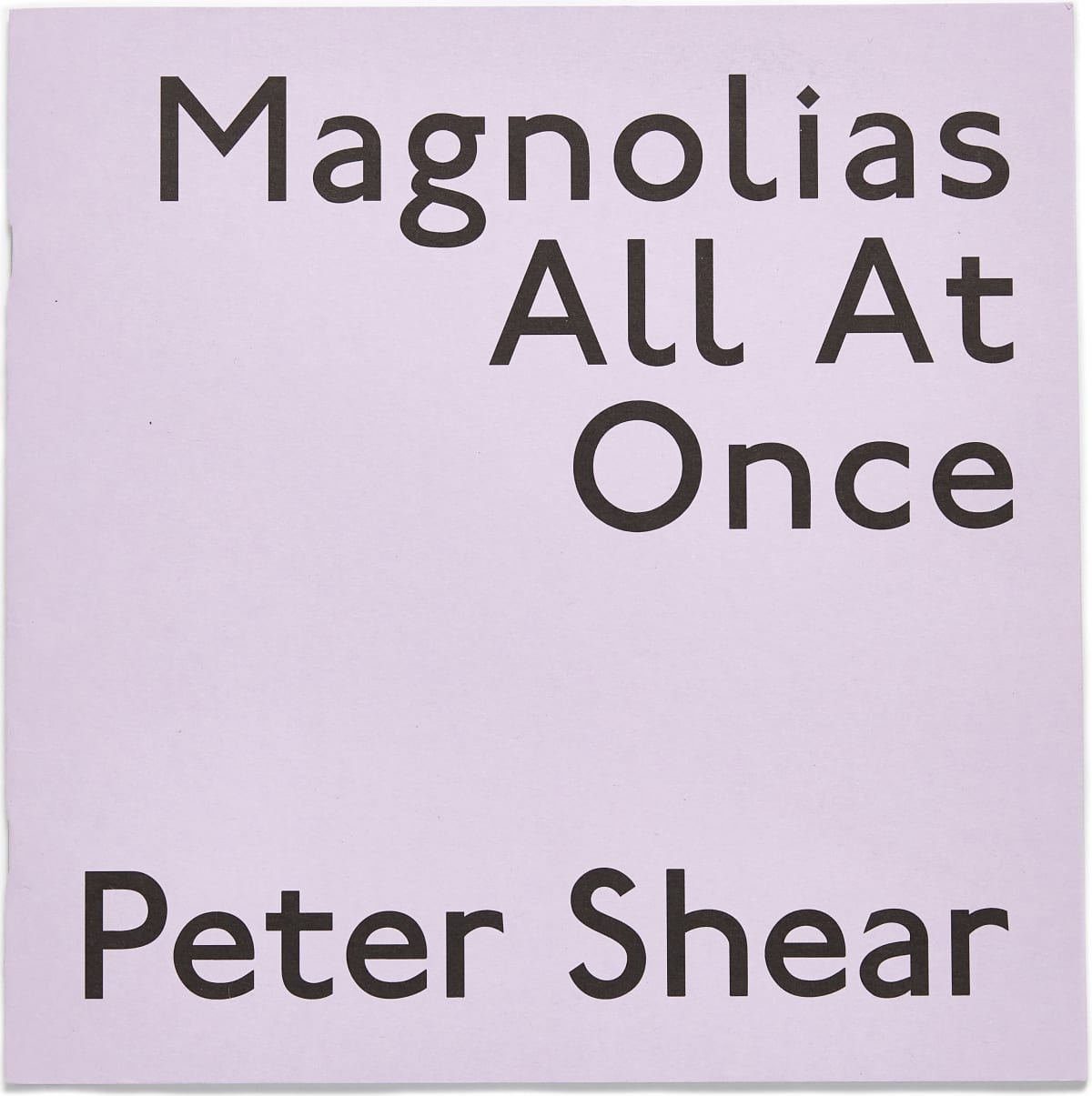 Peter Shear | Magnolias All At Once