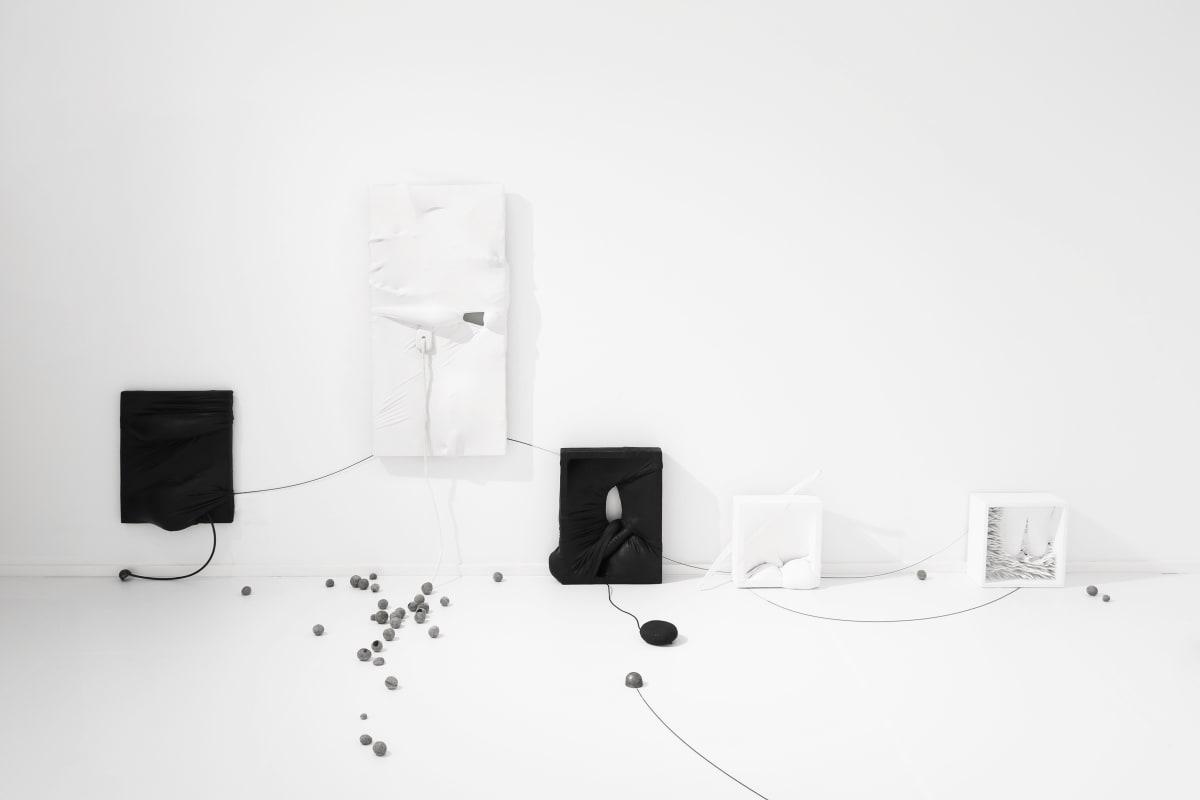 Galerie Du Monde Stella Zhang Translution 2018 4