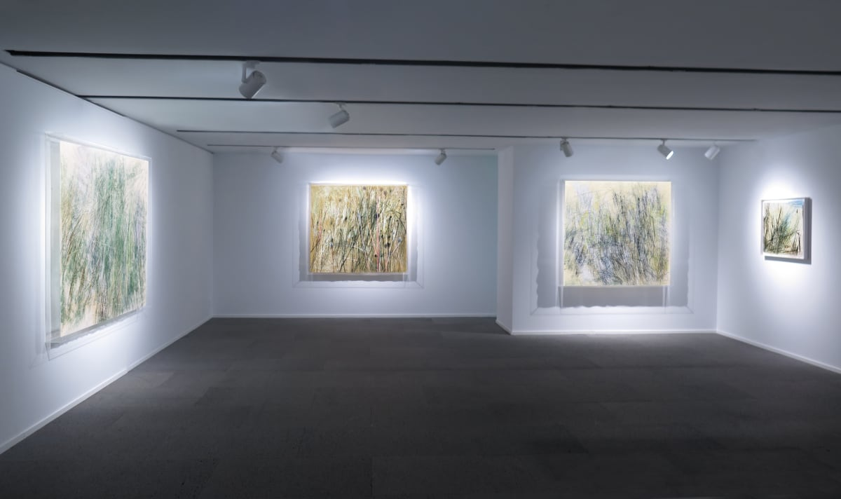 Galerie Du Monde Wang Gongyi Leaves Of Grass Installation View 1