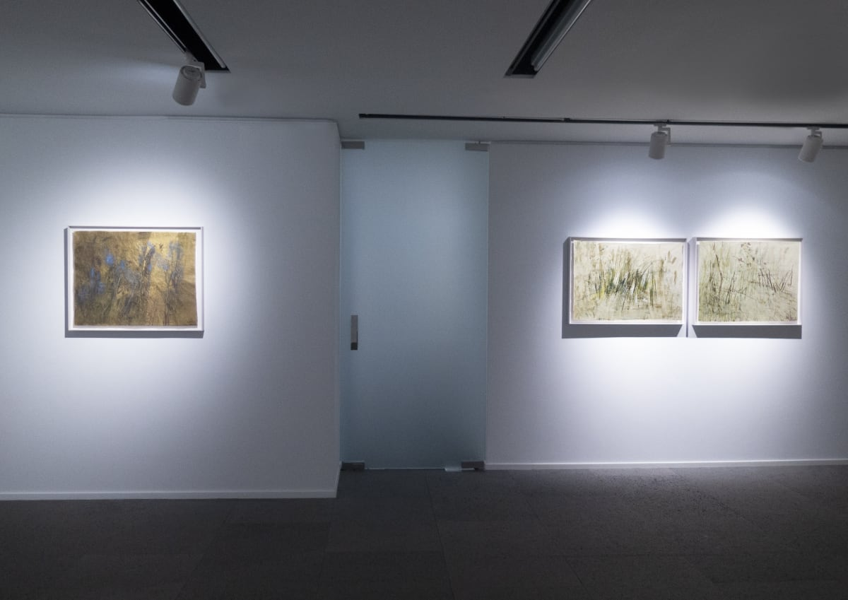 Galerie Du Monde Wang Gongyi Leaves Of Grass Installation View 12