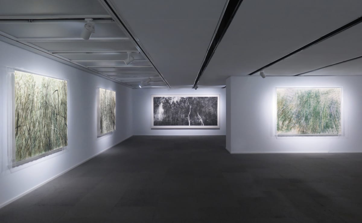 Galerie Du Monde Wang Gongyi Leaves Of Grass Installation View 2