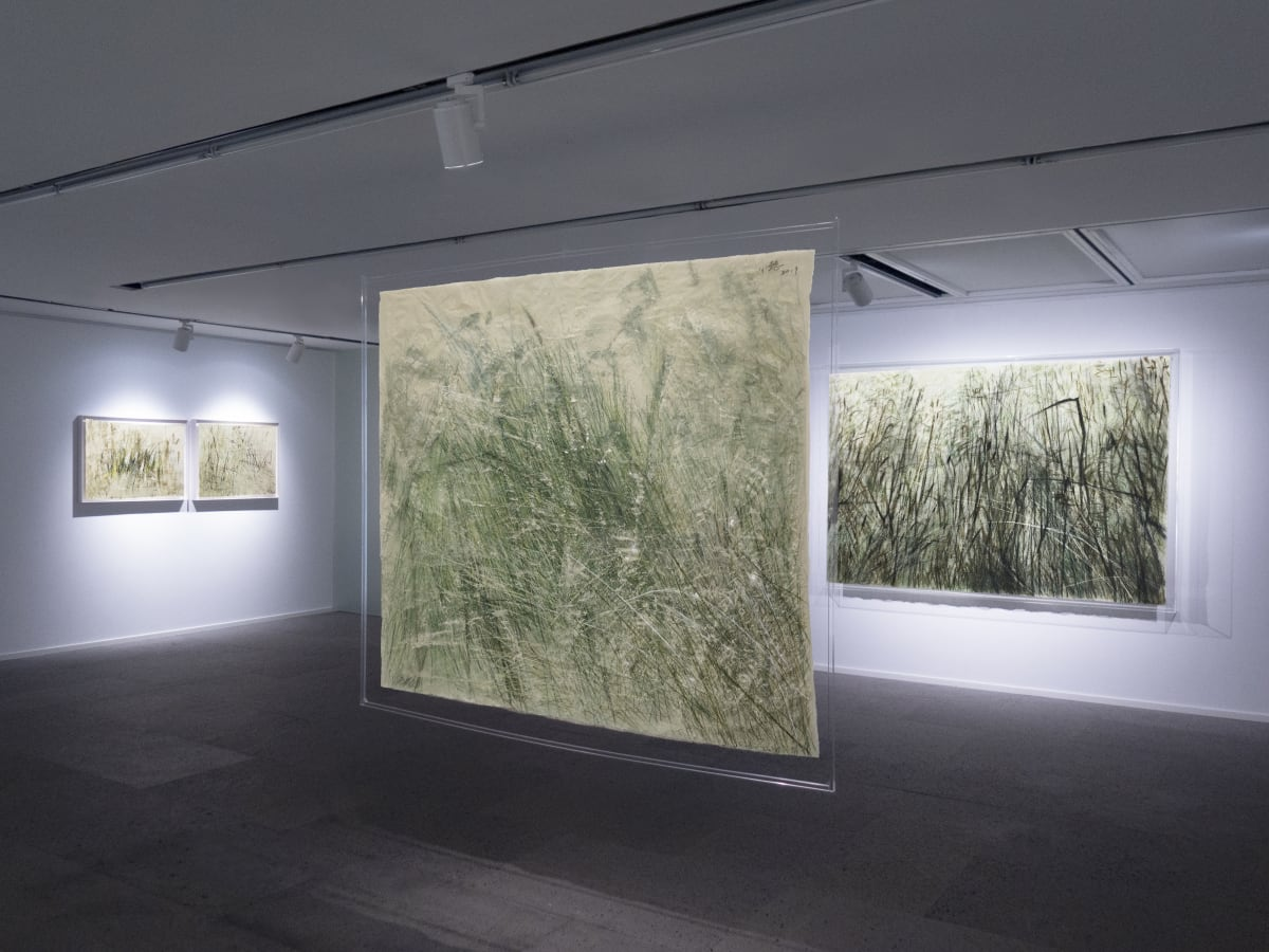 Galerie Du Monde Wang Gongyi Leaves Of Grass Installation View 3
