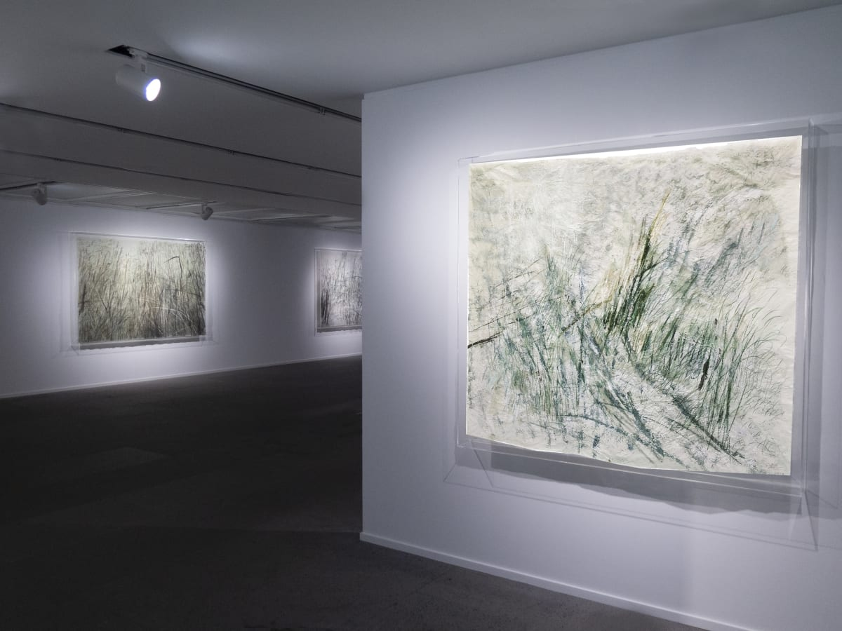 Galerie Du Monde Wang Gongyi Leaves Of Grass Installation View 5