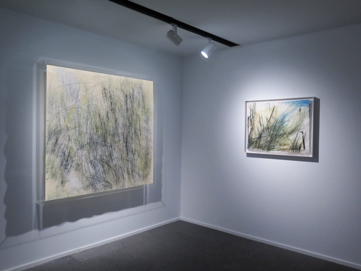 Galerie Du Monde Wang Gongyi Leaves Of Grass Installation View 6