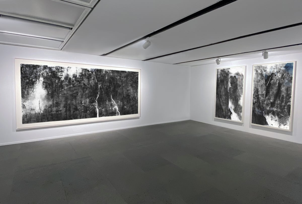 Galerie Du Monde Wang Gongyi Leaves Of Grass Installation View 9