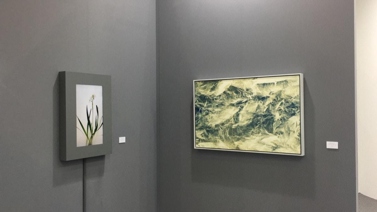 Taipei Dangdai 2019 Installation View 3