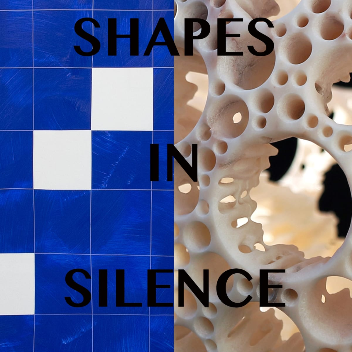 SHAPES IN SILENCE