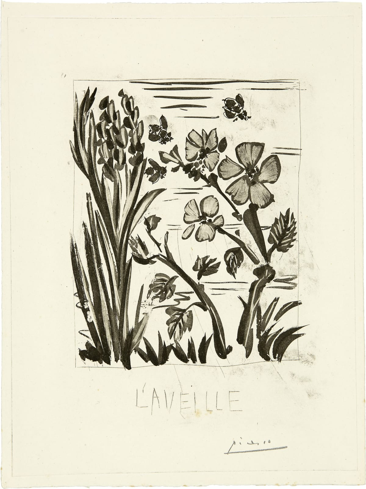 Pablo Picasso L'aveille, 1936-42 Sugar-lift Aquatint, scraper and dry point on Montval paper 41.5 × 31.3 cm Edition of 47 + 1AP