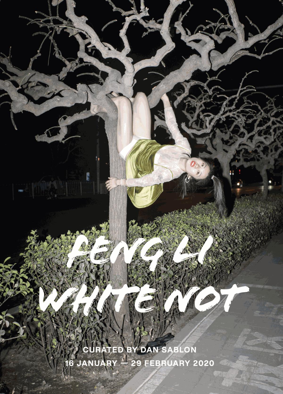 FENG LI: WHITE NOT MANIFESTO