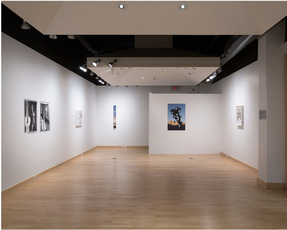 Installation image, Light Work, Kathleen O. Ellis Gallery