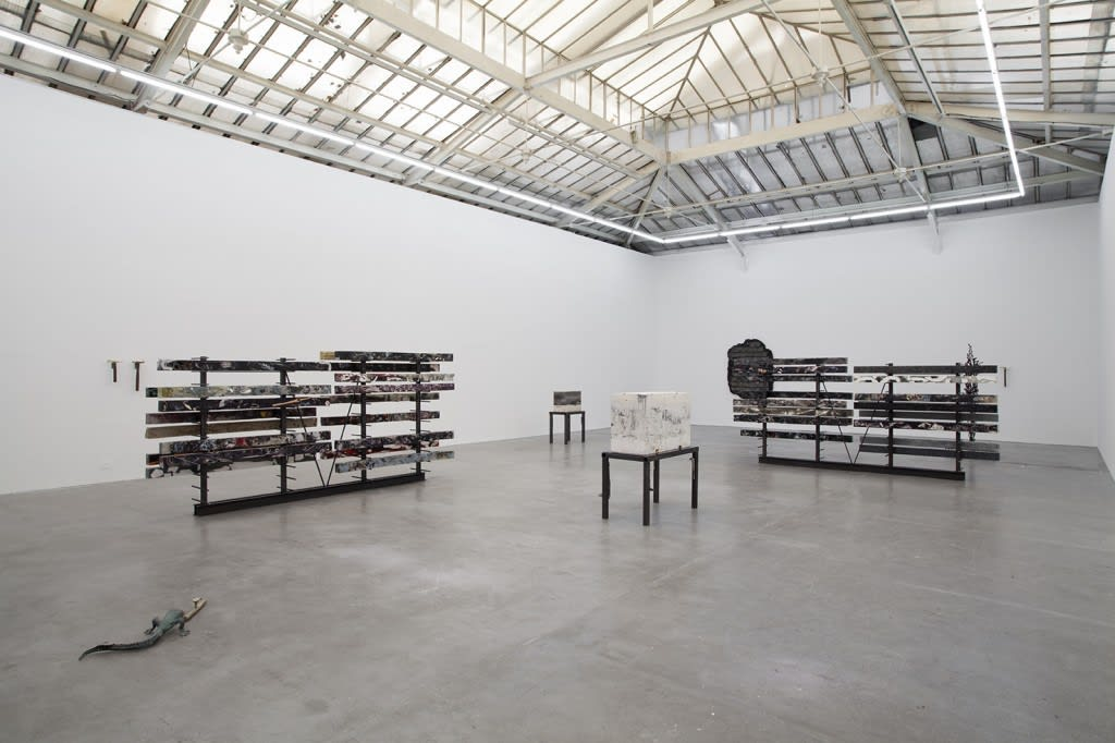 Nick van Woert, Haruspex (Installation View), Courtesy Yvon Lambert Gallery