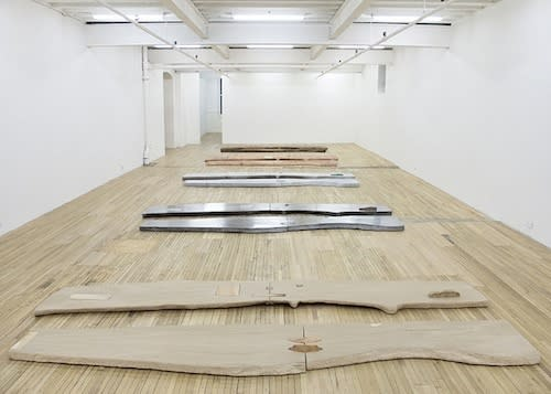 """View of """"Lucy Skaer: Sticks & Stones,"""" 2015."""