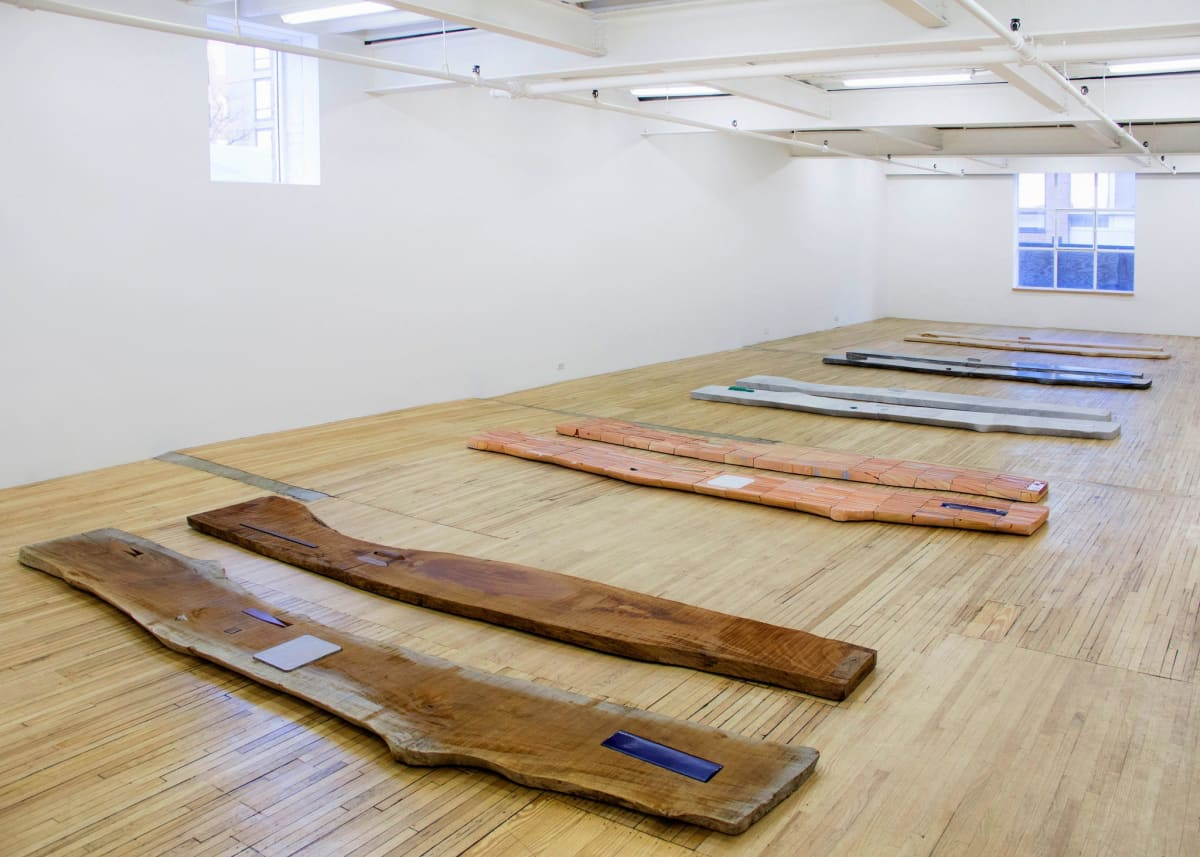 """Lucy Skaer's """"Sticks & Stones"""" installation at the Murray Guy gallery, one of two current shows of her work in Manhattan. Murray Guy"""