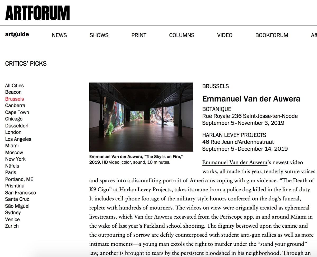 Emmanuel Van der Auwera in Artforum and Art Brussels INSIGHTS