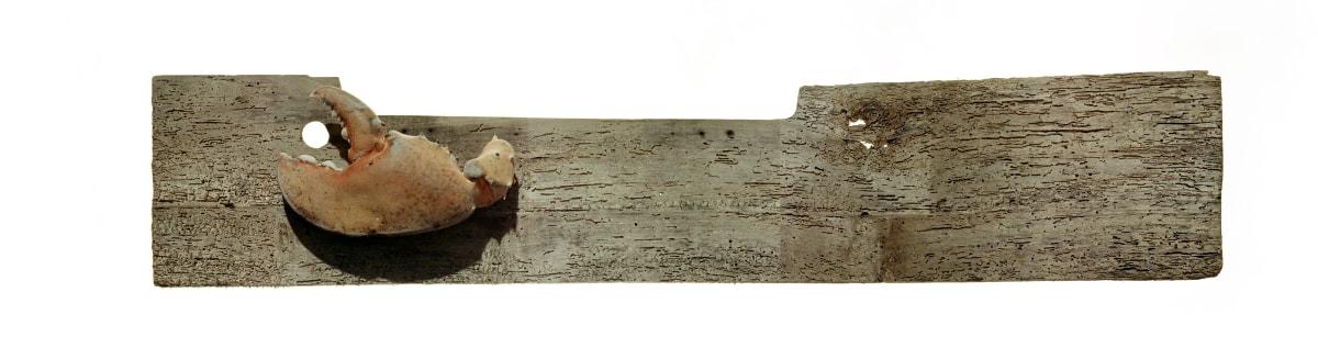 Blind Wood, 1997