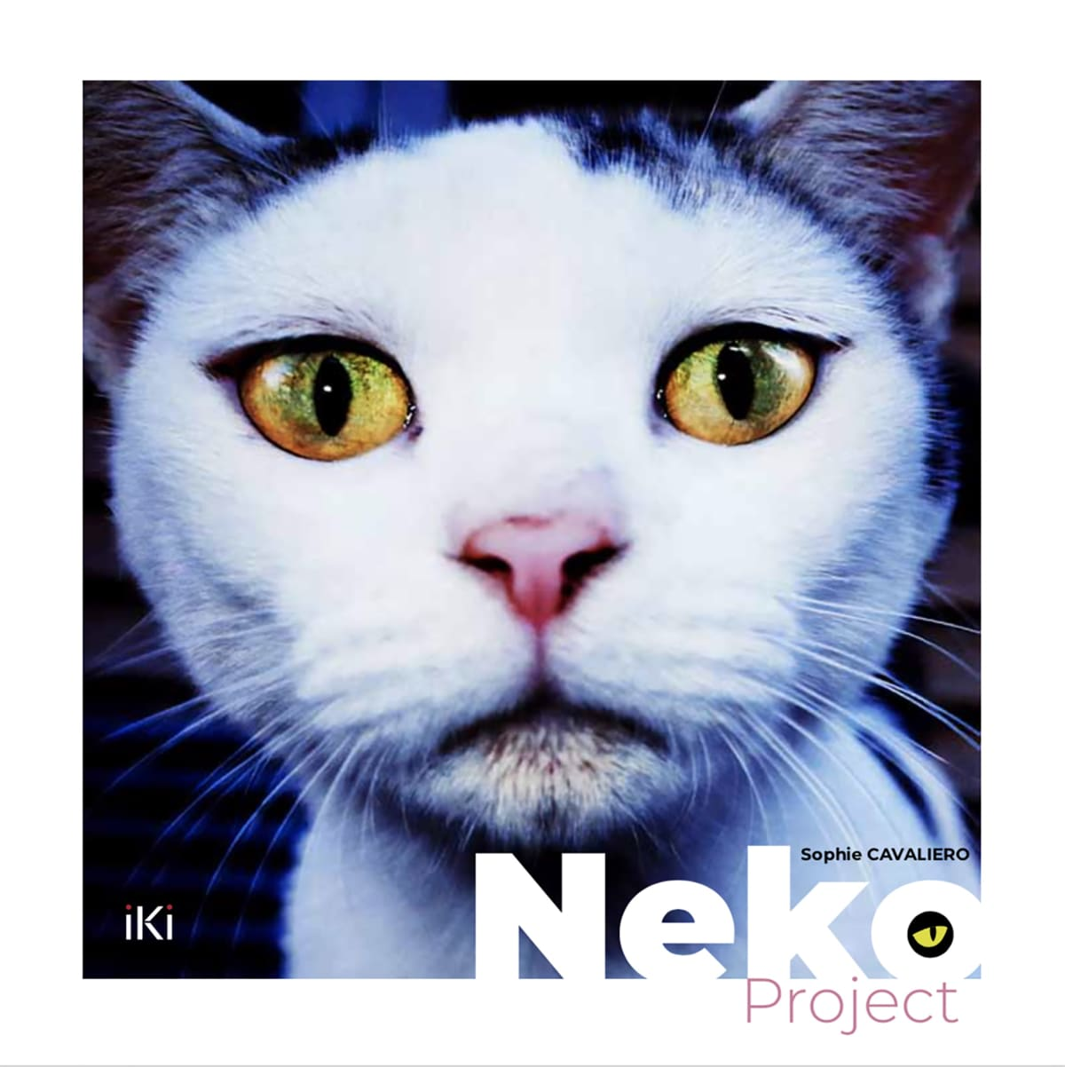 Neko - various Japanese photographers