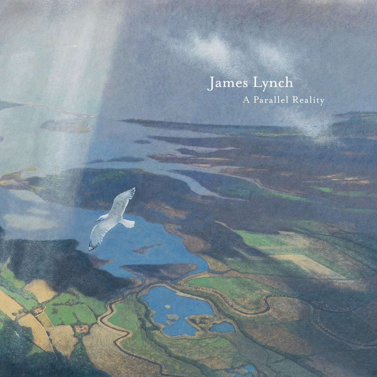 James Lynch - A Parallel Reality