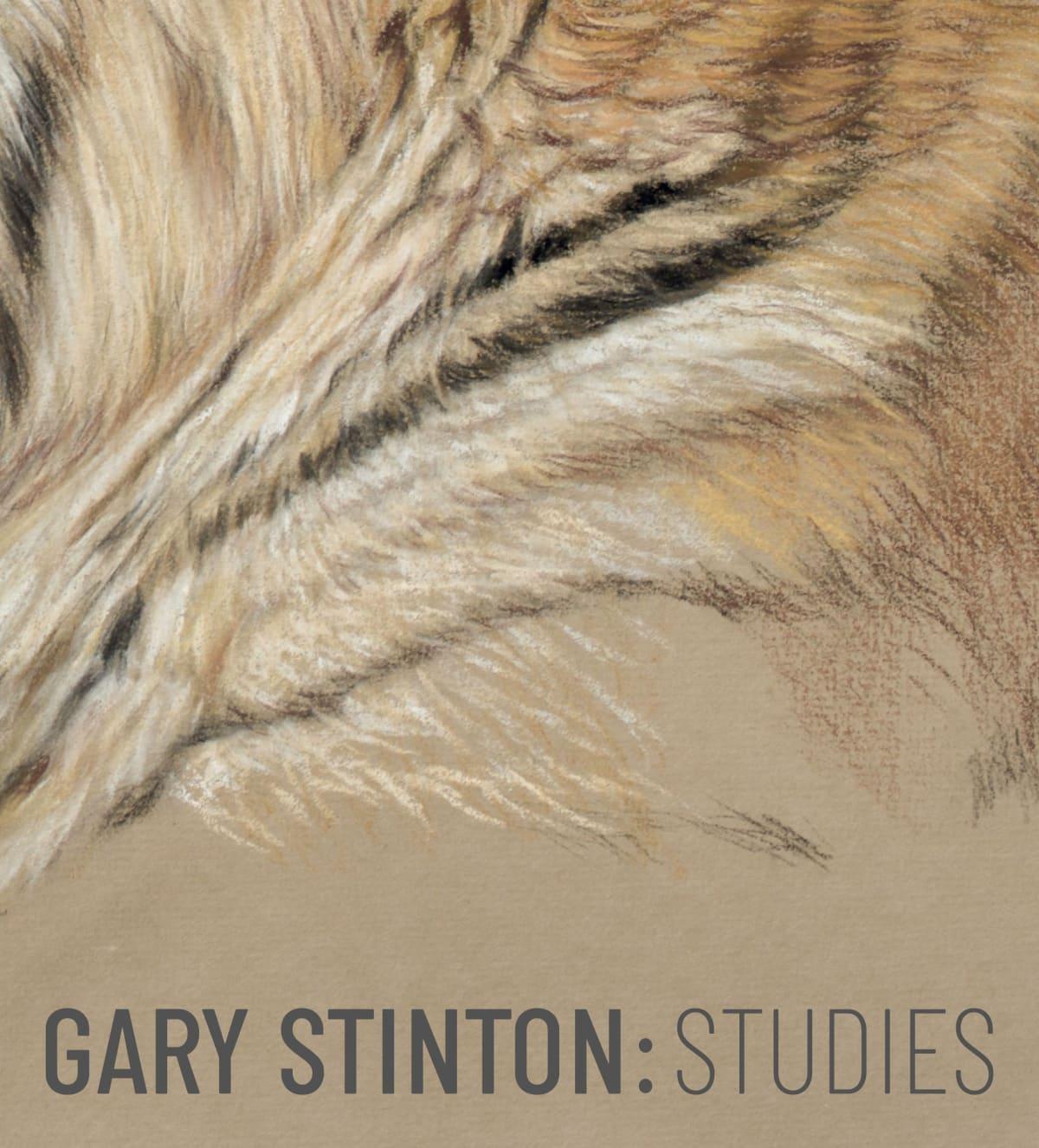 Gary Stinton: Studies