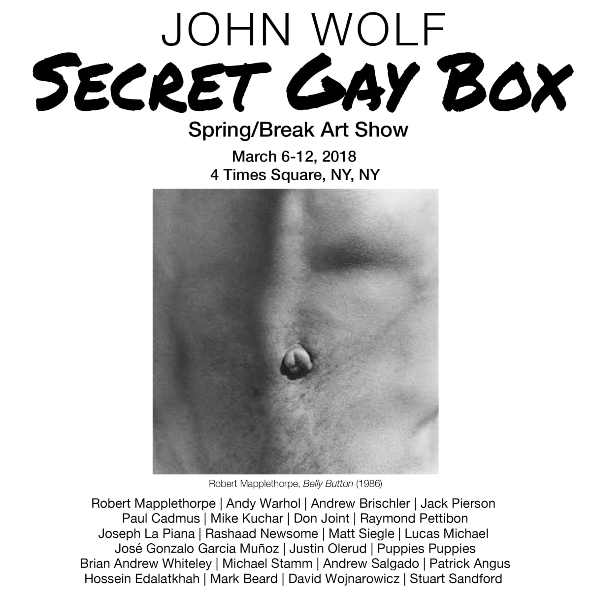 Secret Gay Box