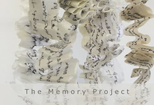 Christine Aaron: The Memory Project